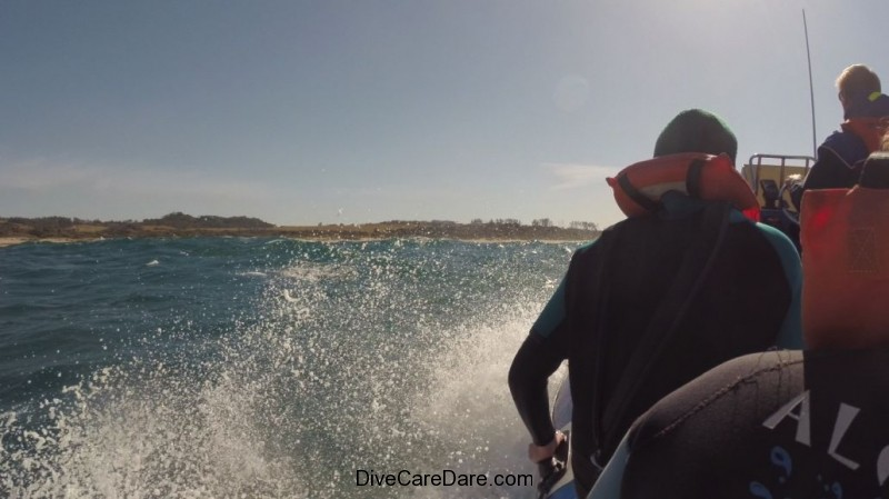 Aliwal Dive Centre-gunning the surf